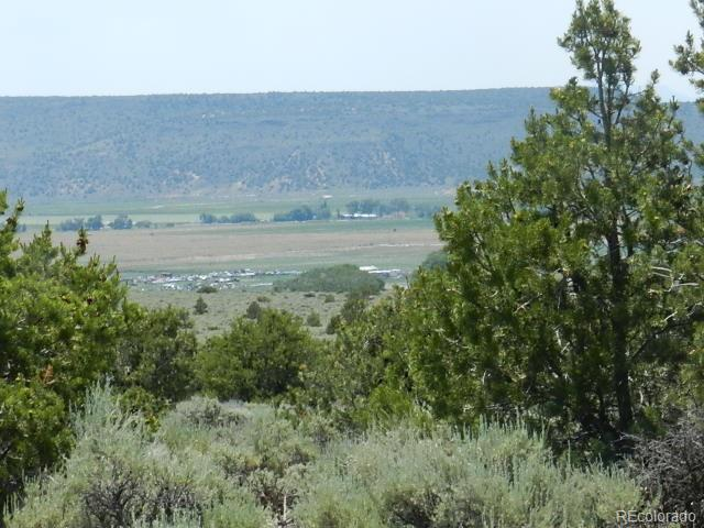 Lot 4 Pine Meadows, San Luis, CO 81152 (#4663603) :: The Griffith Home Team