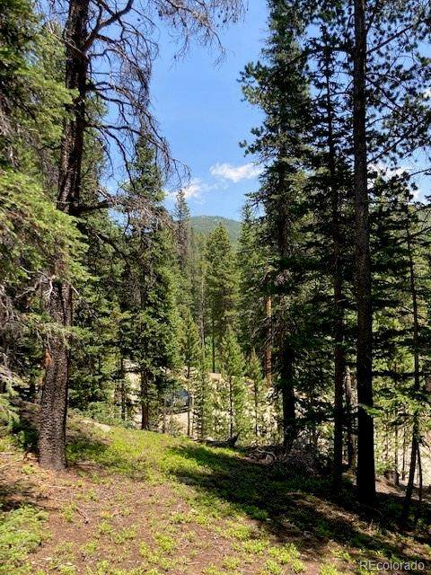 Lot 69 Winterland/Brook Drive, Idaho Springs, CO 80452 (MLS #4680532) :: Bliss Realty Group