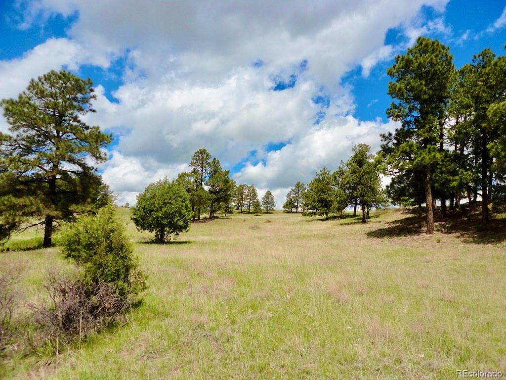 Parcel 4 County Road 102 - Photo 1