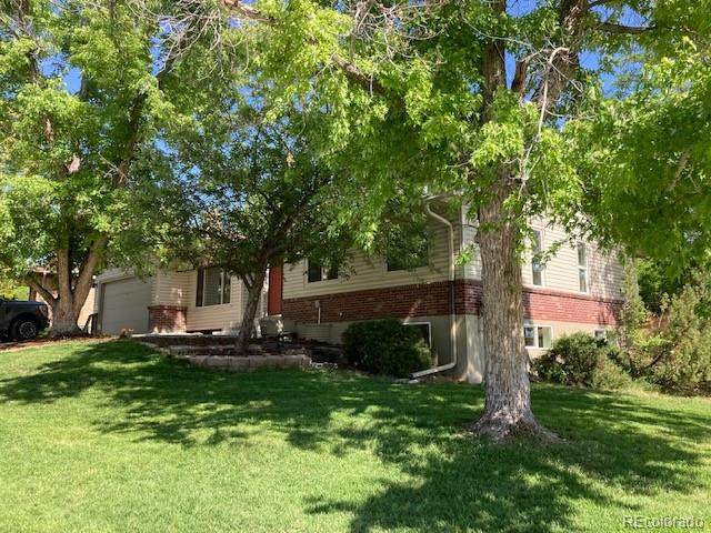 12823 W Jewell Drive, Lakewood, CO 80228 (#4727330) :: Futa Home Team