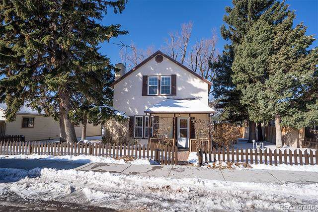 221 N Front Street, Monument, CO 80132 (MLS #4806143) :: Keller Williams Realty