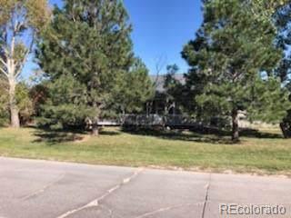 34038 Columbine Trail, Elizabeth, CO 80107 (MLS #4821779) :: 8z Real Estate