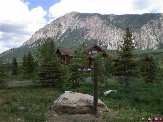 14 Mulligan Drive, Crested Butte, CO 81224 (#4865458) :: Sellstate Realty Pros