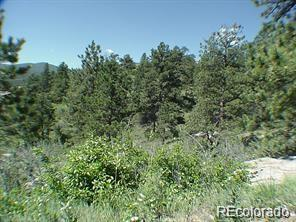 Sleeping Bear Lane Parcel 3, Evergreen, CO 80439 (#4878346) :: 5281 Exclusive Homes Realty