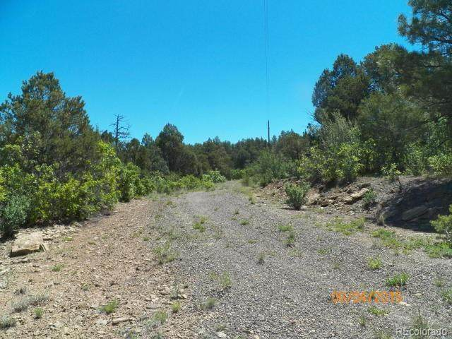 Wildcat Drive, Aguilar, CO 81020 (#4895137) :: Re/Max Structure