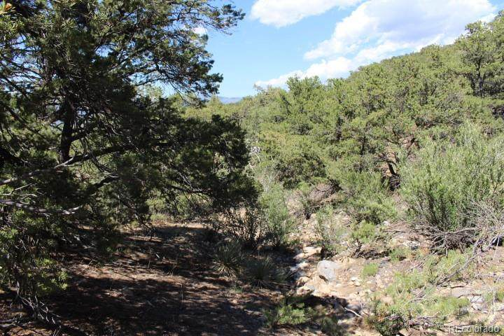 5703 Pinon Ridge (Aka Pineridge) Trail - Photo 1