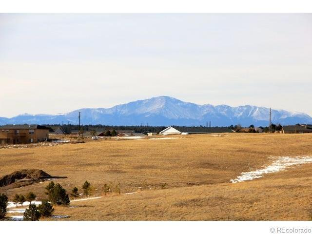 13370 Forest Green Drive, Elbert, CO 80106 (MLS #4945221) :: 8z Real Estate