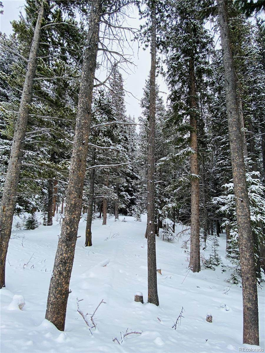 Silver Creek Road - Photo 1