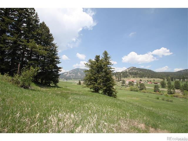 S Turkey Creek Road, Morrison, CO 80465 (MLS #4999646) :: 8z Real Estate