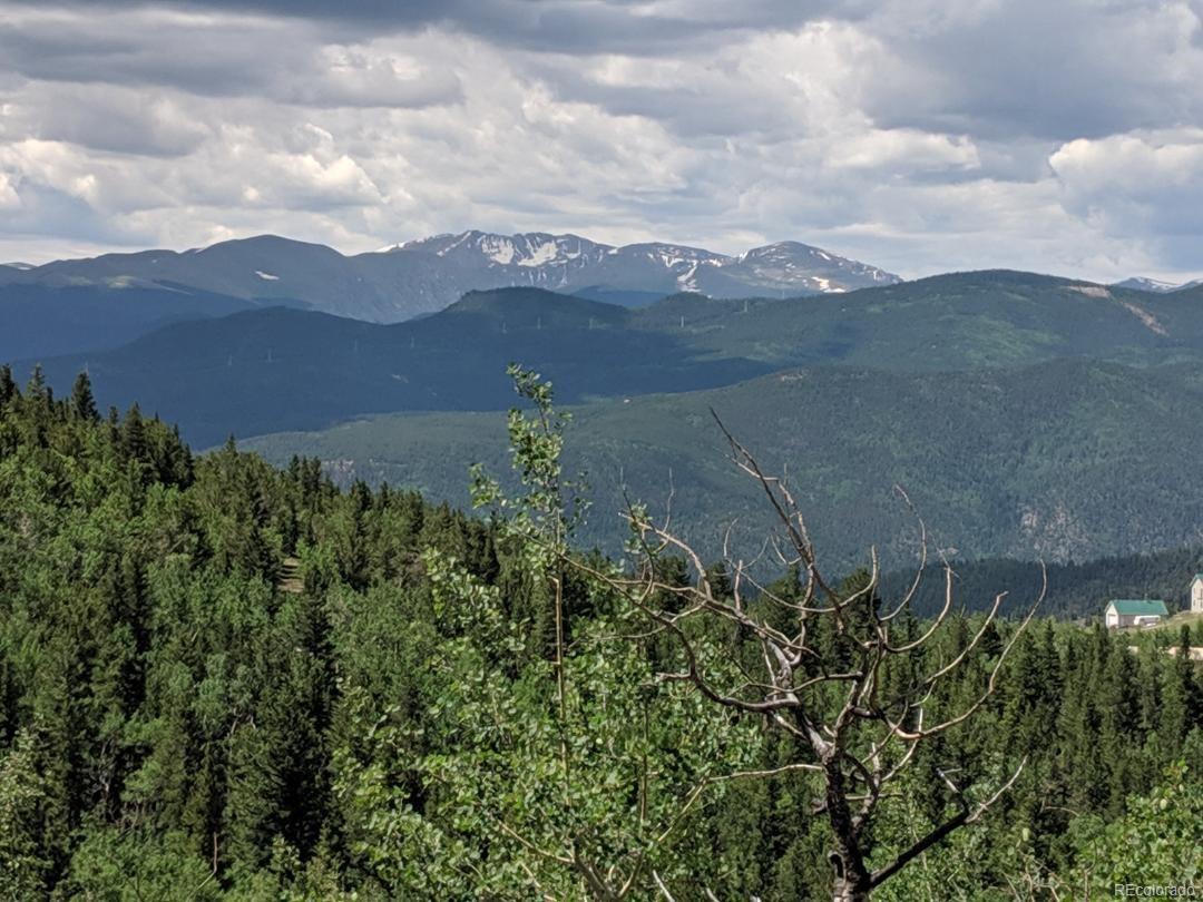 0 Bald Mountain And York Gulch Roads - Photo 1