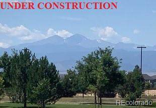 5069 Long Drive, Timnath, CO 80547 (#5138020) :: The DeGrood Team