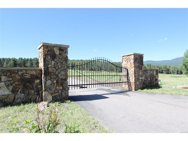 26857 Evergreen Springs Road, Evergreen, CO 80439 (MLS #5228990) :: 8z Real Estate