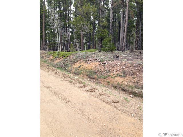 0 On A Hill & Long Trail Roads, Black Hawk, CO 80422 (MLS #5236904) :: 8z Real Estate