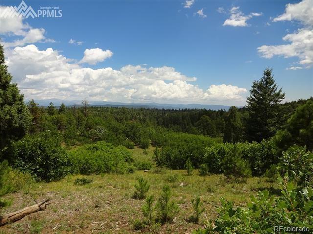 Bear Mountain Road, Canon City, CO 81212 (MLS #5254627) :: 8z Real Estate