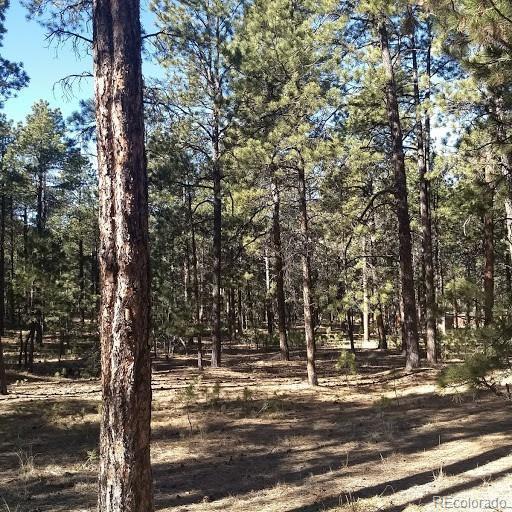 0 Fools Gold Lane, Colorado Springs, CO 80921 (#5306893) :: Bring Home Denver