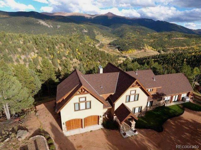199 Running Elk Point, Divide, CO 80814 (#5316845) :: Wisdom Real Estate