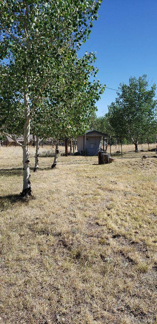 98 Aspen Lane, Bailey, CO 80421 (#5364799) :: Colorado Home Finder Realty