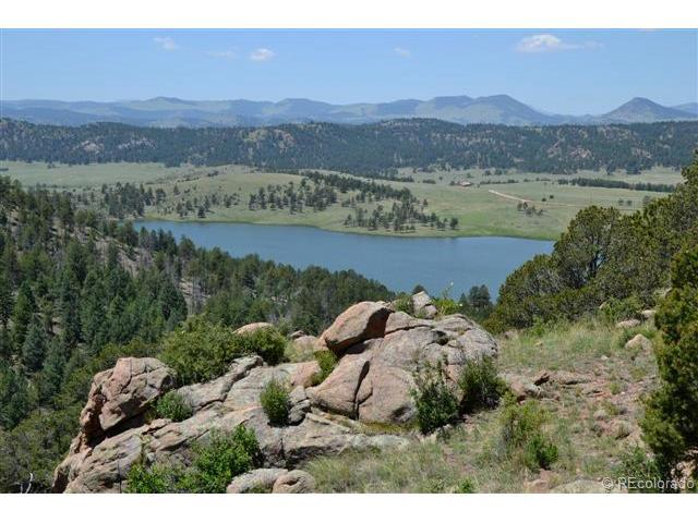 872 Lakeview Forest Heights, Florissant, CO 80816 (MLS #5419224) :: 8z Real Estate