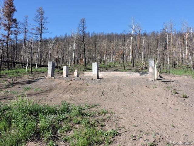 453 Wagon Mesa Loop - Photo 1