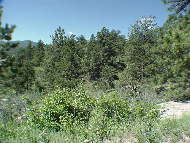 Sleeping Bear Parcel 3 Lane, Evergreen, CO 80439 (#5510114) :: Wisdom Real Estate