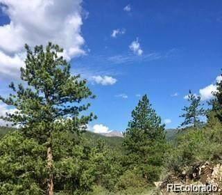 10 Ohio Gulch, Idaho Springs, CO 80452 (#5510298) :: The Griffith Home Team
