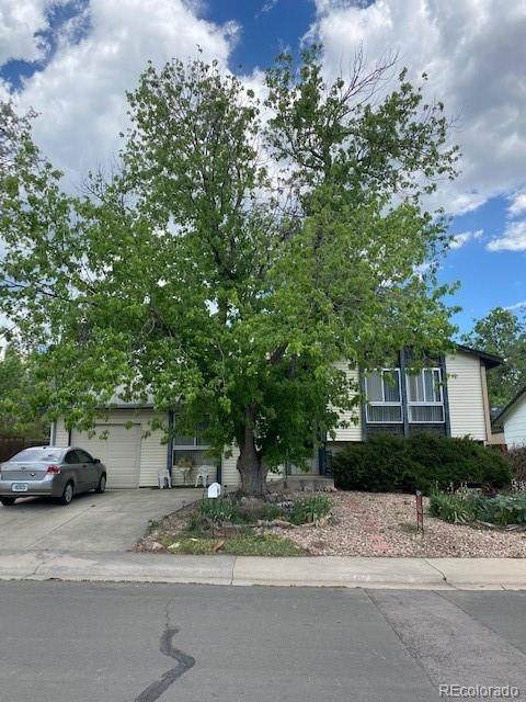 18955 W 59th Place, Golden, CO 80403 (#5542166) :: Re/Max Structure