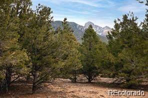 45 Crestone Overlook, Crestone, CO 81131 (#5555657) :: The Colorado Foothills Team | Berkshire Hathaway Elevated Living Real Estate