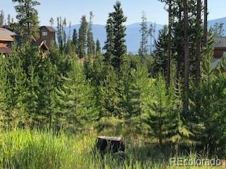 242 County Road 4571, Grand Lake, CO 80447 (#5568106) :: James Crocker Team