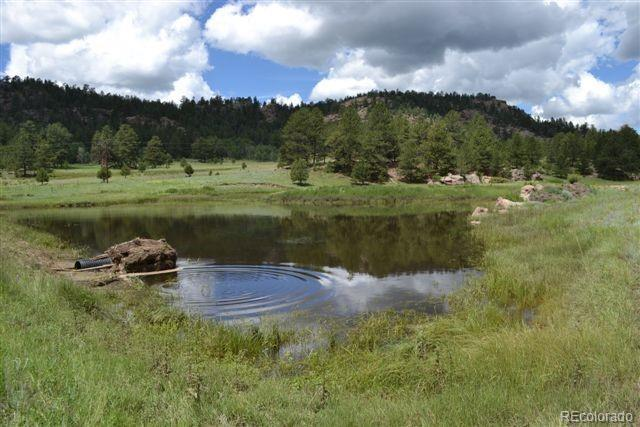 0 County 111 Road, Florissant, CO 80816 (#5608990) :: Group 46:10 - Denver
