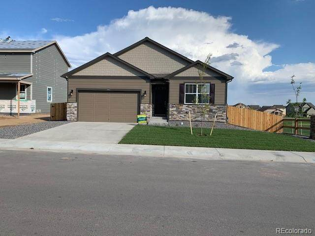 1645 Clarendon Drive, Windsor, CO 80550 (#5807094) :: Re/Max Structure