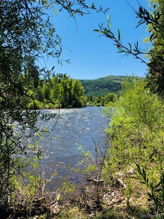 27 Wild Trout Way, Antonito, CO 81120 (#5877288) :: The Peak Properties Group