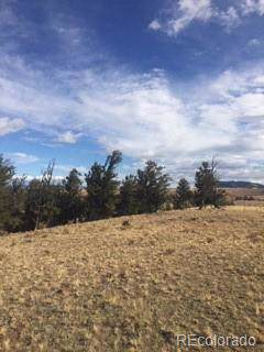 00 Black Cloud Trail, Hartsel, CO 80449 (#5980715) :: RazrGroup