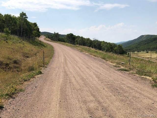 28900 County Road 179, Oak Creek, CO 80467 (#6064099) :: The Gilbert Group