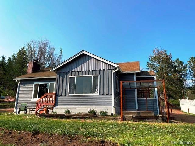 16914 S 7th Street, Pine, CO 80470 (#6088470) :: Wisdom Real Estate