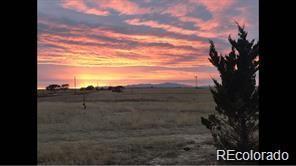 31550 Sanborn Road, Yoder, CO 80864 (MLS #6142387) :: 8z Real Estate