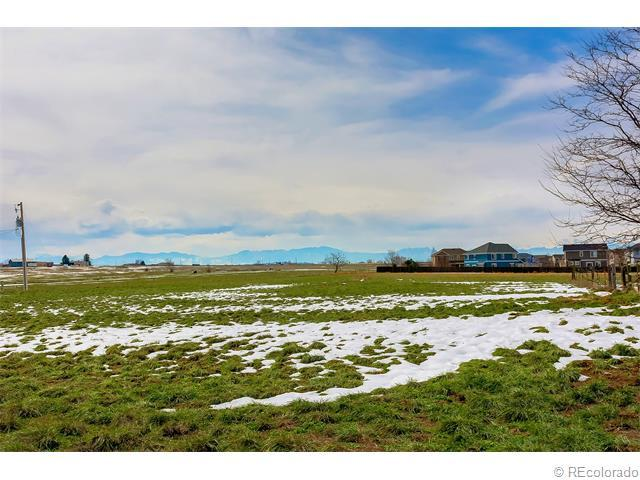 York, Brighton, CO 80602 (MLS #6251596) :: 8z Real Estate