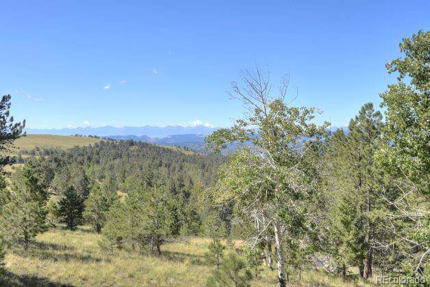 Alpine Ranch Circle, Canon City, CO 81212 (#6261245) :: James Crocker Team