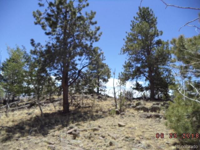 168 Concho Trail, Hartsel, CO 80449 (#6267812) :: Bring Home Denver