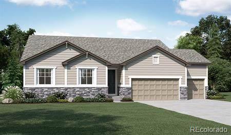 6682 Angelique Avenue, Castle Rock, CO 80108 (#6284765) :: HomePopper