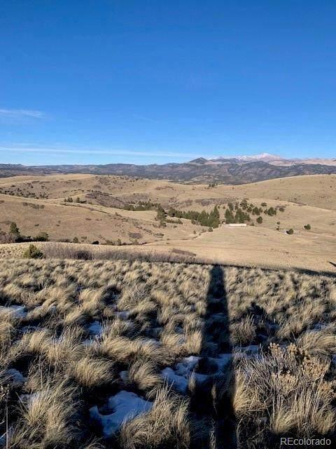 397 Sheep Springs Lane, Canon City, CO 81212 (#6285358) :: The DeGrood Team