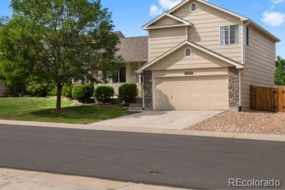 3716 Black Feather Trail, Castle Rock, CO 80104 (#6320931) :: Bring Home Denver