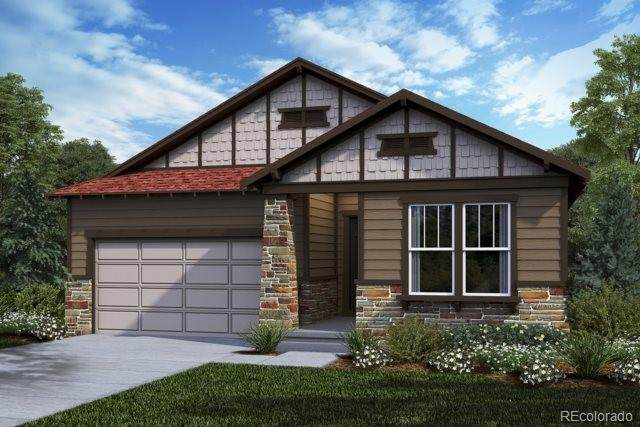 3893 Forever Circle, Castle Rock, CO 80109 (#6347918) :: The Dixon Group