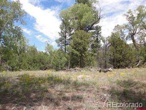 27 Pine Valley Loop, Mosca, CO 81146 (MLS #6388860) :: 8z Real Estate