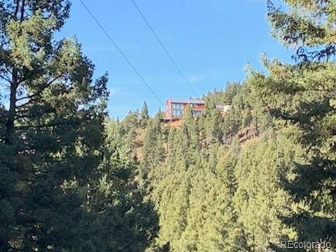 13237 Deer Ridge Way, Larkspur, CO 80118 (#6410418) :: Berkshire Hathaway Elevated Living Real Estate