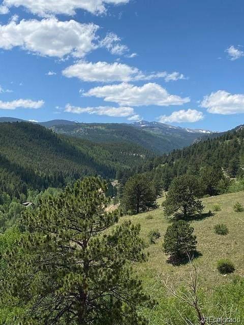 9615 Hwy 119 Highway, Black Hawk, CO 80422 (#6422479) :: Peak Properties Group