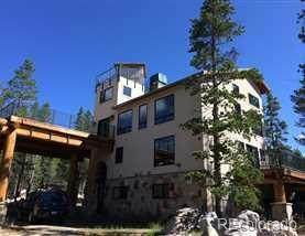 3500 County Road 4, Leadville, CO 80461 (#6454082) :: Relevate | Denver