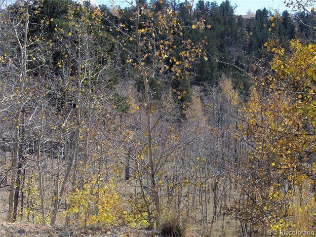 1100 Osprey Road - Photo 1