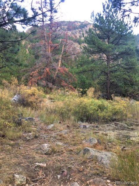 0 Subdivision: Meadows Georgetown, The Block: 2 Lot, Georgetown, CO 80444 (MLS #6464505) :: 8z Real Estate