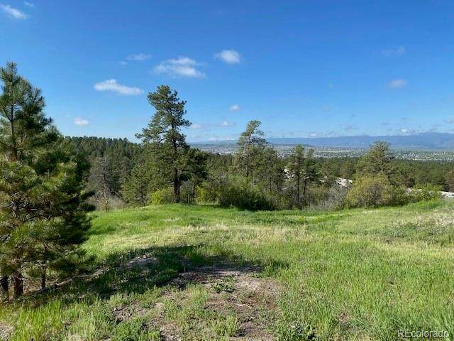 488 Wrangler Road, Castle Rock, CO 80108 (#6492343) :: The Griffith Home Team