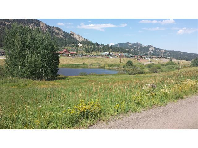25671 Duran Avenue, Conifer, CO 80433 (#6566207) :: The Heyl Group at Keller Williams